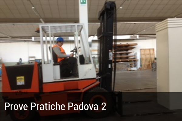 PP Padova 2 muletto